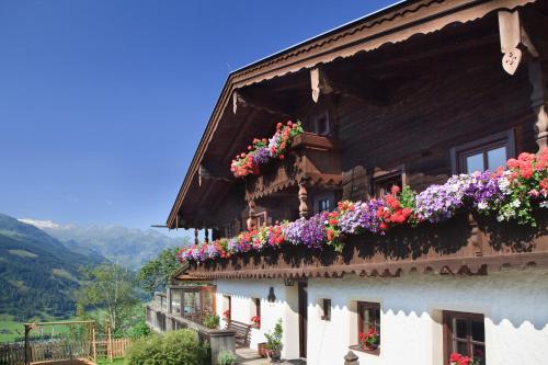 Фото отеля Taxhof