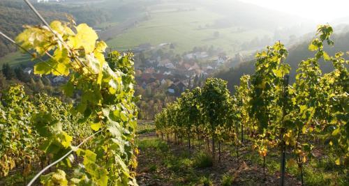 Weingut Hees - Landgasthof Zum Jager aus Kurpfalz