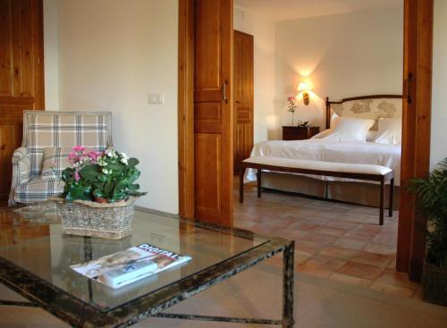 Suite Junior Hotel Puerta de la Luna 8