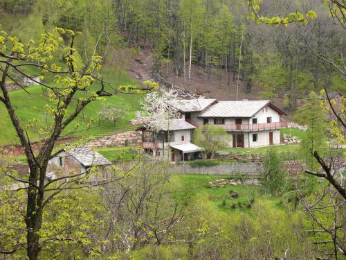 Residence Joy Center - Accommodation - Villar Pellice