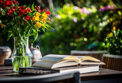 BE Jardin Escondido By Coppola photo 18