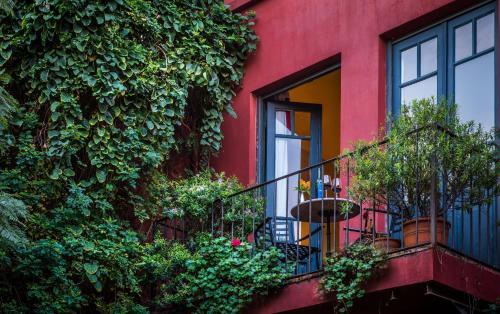 BE Jardin Escondido By Coppola photo 34