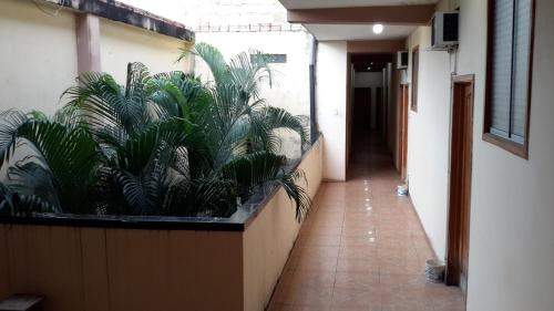 HotelHostal Las Amazonas Inn