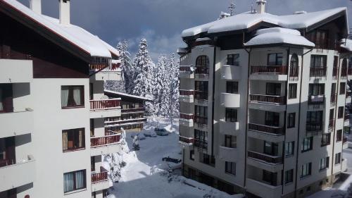 Apart Hotel Flora Residence Daisy - Photo 5 of 78