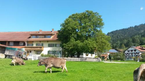 Sägerhof Bader - Hotel - Rettenberg