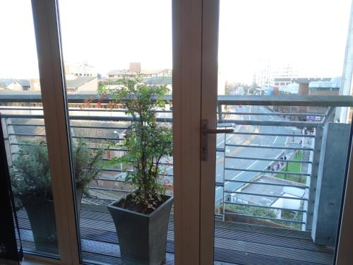 Foto - The Cardiff Apartment