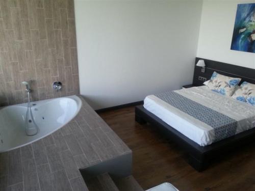 Superior Suite Hotel Balneario de Zújar 4