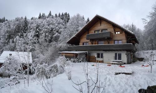 Chalet OTT - apartment in the mountains - Apartment - Saint-Cergue