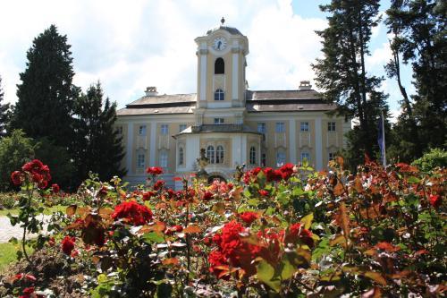 . Schlosshotel Rosenau Superior