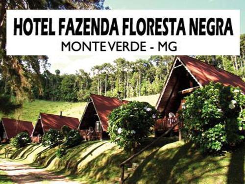 . Hotel Fazenda Floresta Negra