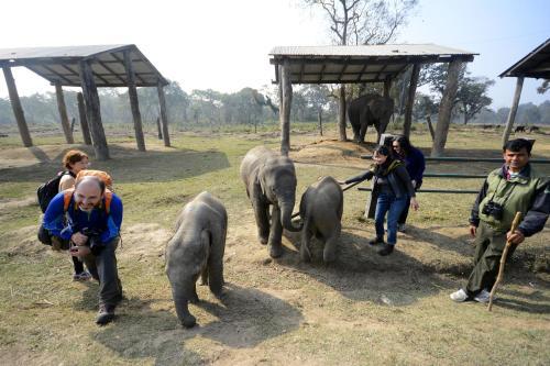 Green Park Chitwan, Sauraha, Nepál  Rezervácie