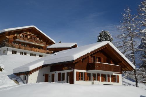Apartment Dolomit DG 3.5- GriwaRent Grindelwald