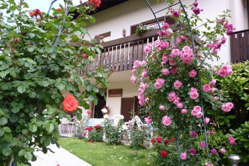 Garni Rebhof - Accommodation - Nalles