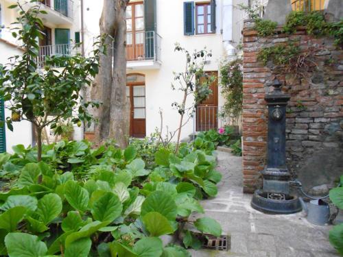 . Residence Domus