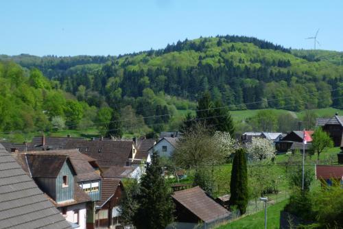 . Schwarzwald Domizil Uhlsberg