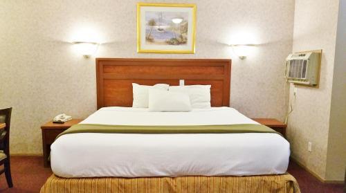 Alpine Motel - image 4