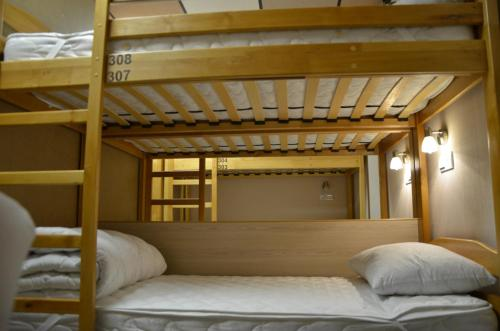 Bunk Bed in Mixed Dormitory Room for 12 people
