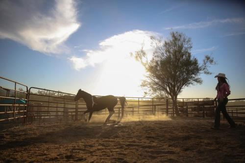14301 East Speedway, Tucson, Arizona, 85748, United States.