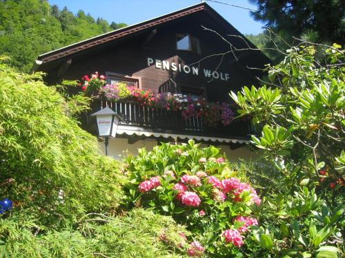 Pension Wolf - Steindorf am Ossiacher See