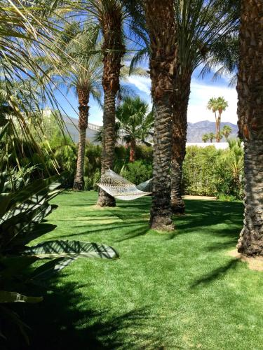 4200 E Palm Canyon Dr, Palm Springs, CA 92264, United States.
