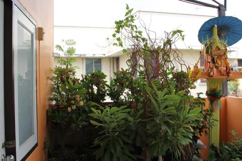 New C.H. Guest House photo 38