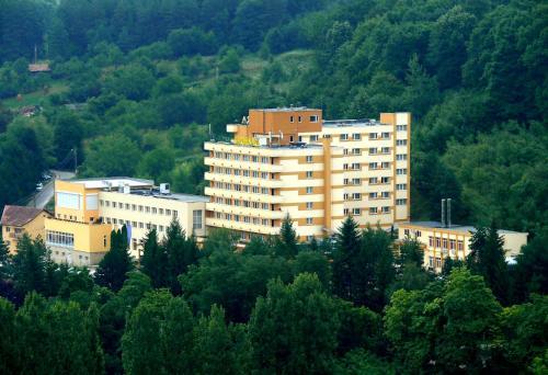 . Hotel Germisara