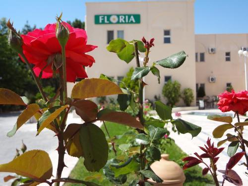 Urgup Floria Hotel telefon