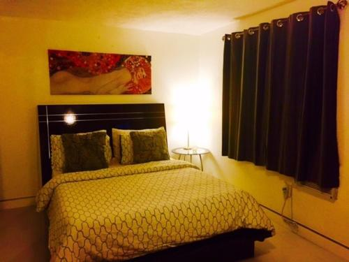 House Number 385 Miami - Miami, FL 33138
