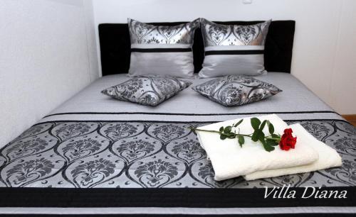 Villa Diana Główne zdjęcie