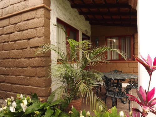 Villas Colibrí, Cuernavaca