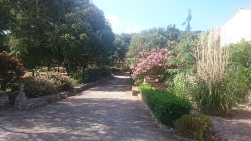 Domaine De Foresta