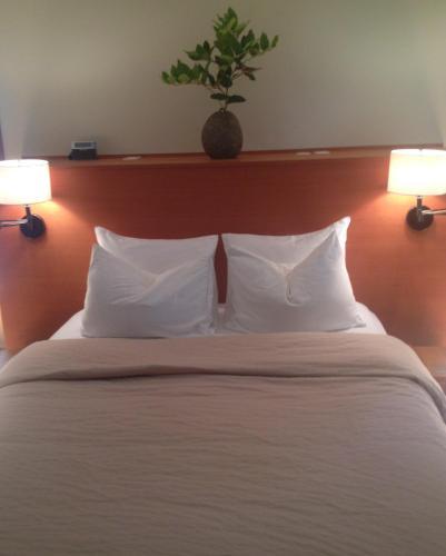 Hyphocus Inn - Accommodation - Ucluelet