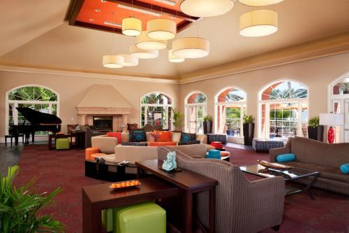 Hilton Grand Vacations at SeaWorld photo 5