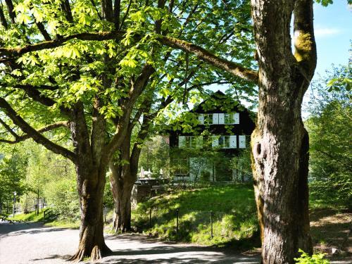 . Hotel Langenberg