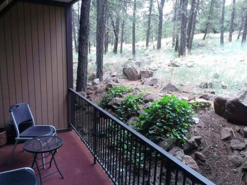 Motel In The Pines - Flagstaff, AZ AZ 86017