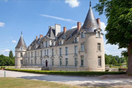 Kasteel-overnachting met je hond in Chateau d'Augerville - Augerville-la-Rivière