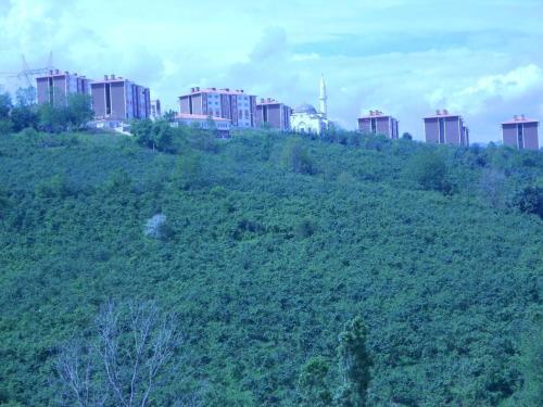 Trabzon Liberta Evleri online rezervasyon