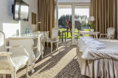 . Hotel Kiston