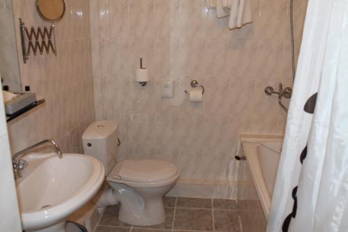 Гостиница Булгар Полулюкс с 1 спальней