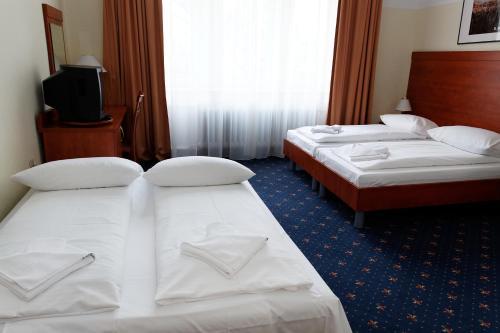 Hotel Europa City photo 9