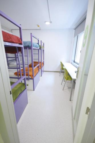 Scout Madrid Hostel 房间的照片