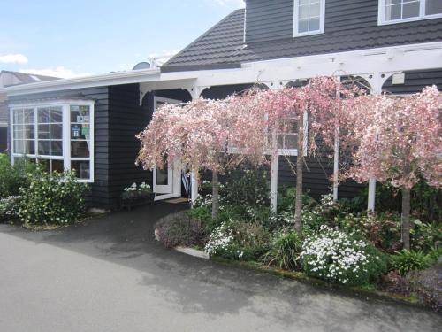 Cottage Mews Motel - Accommodation - Taupo