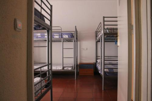 4 Bunk Beds in Mixed Dormitory Room