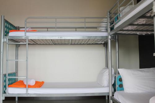 Letto a Castello in Dormitorio Misto (4 Adulti)  (Bunk Bed in Mixed Dormitory Room (4 Adults) )