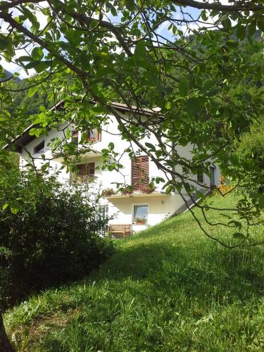 . Apartment Zadraga