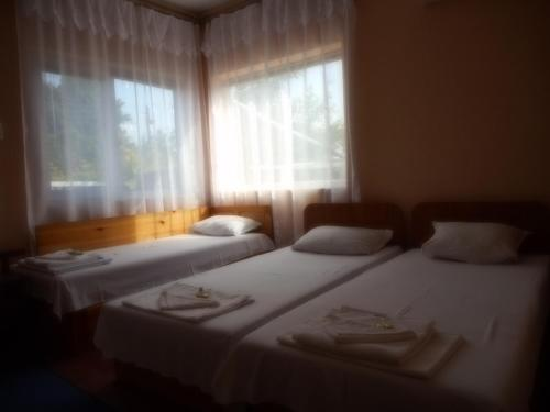 . Guest House Borisov