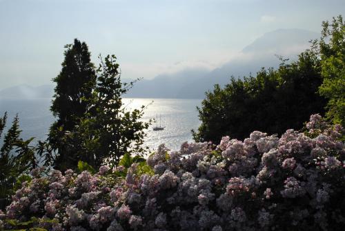 Via Rezzola 41, Località Torre Grado, Praiano, Amalfi Coast, Italy.