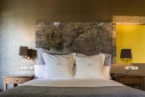 Habitación Doble Deluxe - 1 o 2 camas Pazo da Pena Manzaneda 1