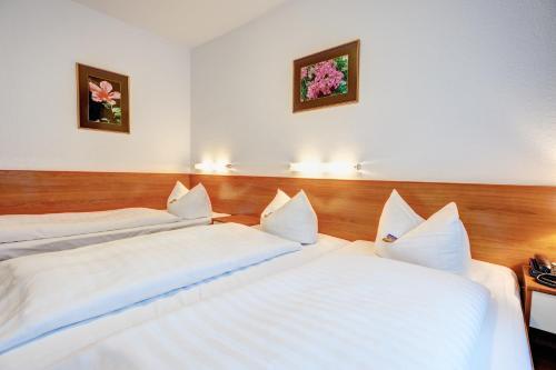 Hotel Antares photo 30
