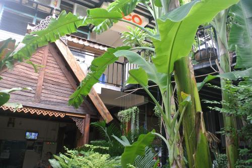 Eco House photo 2